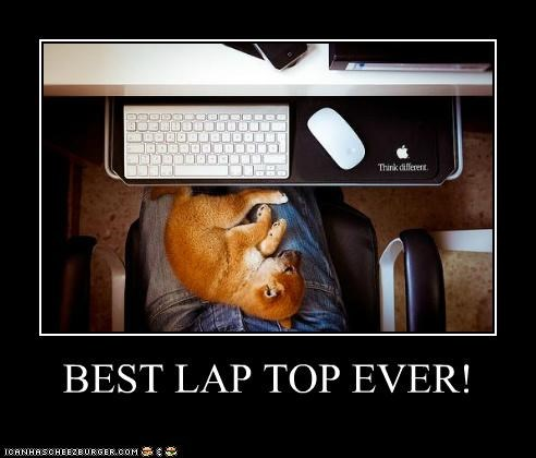 BEST LAP TOP EVER!