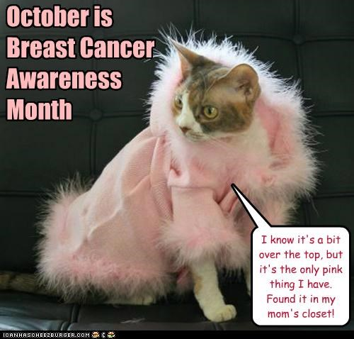 Are you ready for the Wearing o' the Pink?