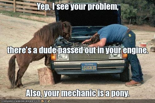 cars,horses,mechanics,ponies