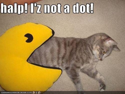 animals,being eaten,Cats,dots,eating,halp,I Can Has Cheezburger,pac man,pillows,video games