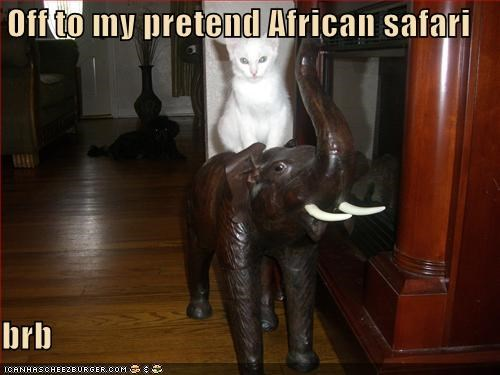 african,brb,caption,captioned,cat,my,off,pretend,riding,safari,statue