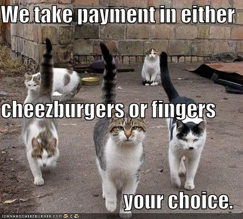 We take payment in either  cheezburgers or fingers your choice.