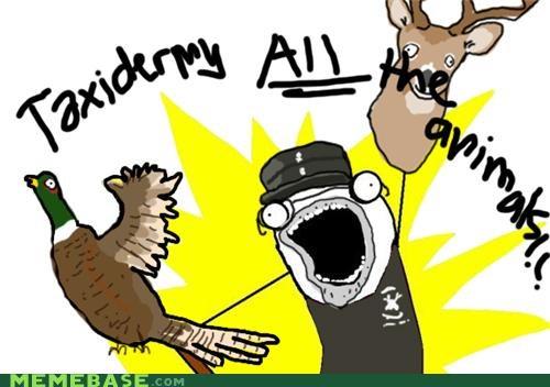 all the things,animals,animemes,Chuck Testa,memebase,nope,taxidermy