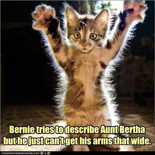 Bernie tries to describe Aunt Bertha but he just can't get his arms that wide.