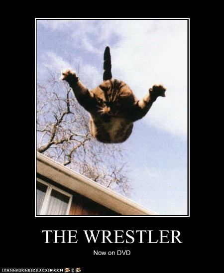 caption,captioned,cat,cover,DVD,falling,jumping,Movie,now,title,wrestler