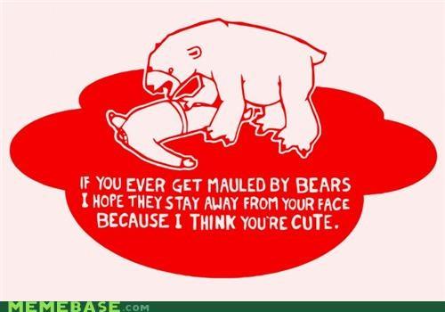 Bears Never Listen