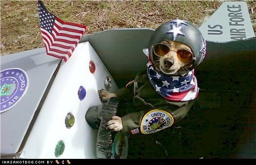 Dogtober 2011: Ready 4 Takeoff!