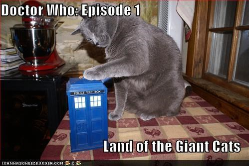 funny pictures - Doctor Who: Episode 1  Land of the Giant Cats