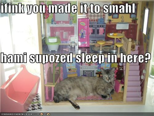 ifink you made it to smahl hami supozed sleep in here?