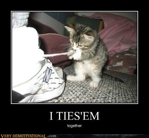animals,cat,fiendish,Hall of Fame,hilarious,shoes,tie