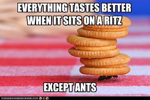 Ants Don't Really Taste Good On Anything