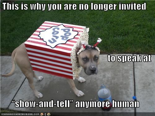animals,costume,dogs,dressed up,embarrassed,i has a hotdog,i hate you,Popcorn,show and tell