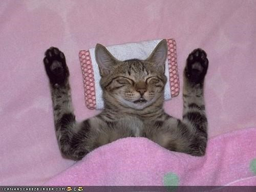 Cyoot Kitteh of teh Day: Leev Meh Alone; Itz Caturday!