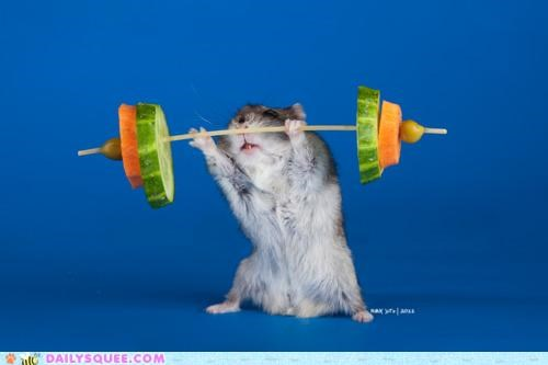 acting like animals,dumbbell,lifting,makeshift,mouse,vegetable,vegetables,weight,working out