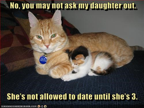 age,ask,caption,captioned,cat,Cats,date,dating,daughter,denied,kitten,limit,mother,no,permission,requirement,tabbies,tabby,three