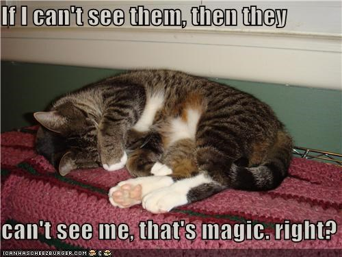 If I can't see them, then they  can't see me, that's magic. right?