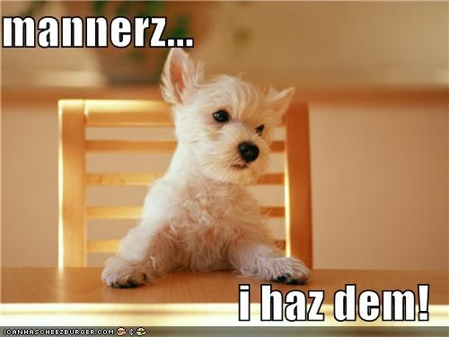 dinner table,excuse me,manners,polite,table,west highland white terrier