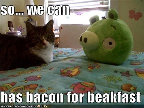 so... we can  has bacon for beakfast