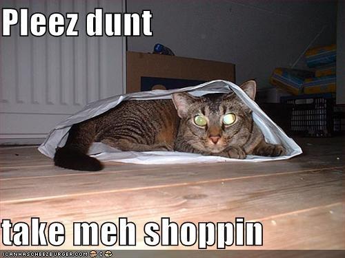 Pleez dunt   take meh shoppin