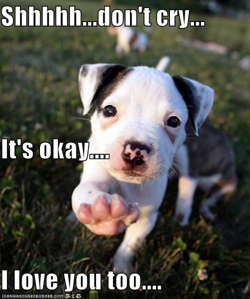 Shhhhh...don't cry... It's okay.... I love you too....