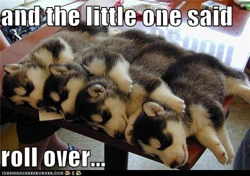 and the little one said  roll over...