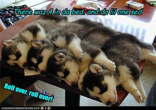 There waz 4 in da bed, and da lil one sed