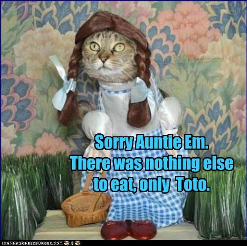 Sorry Auntie Em.There was nothing else to eat, only  Toto.