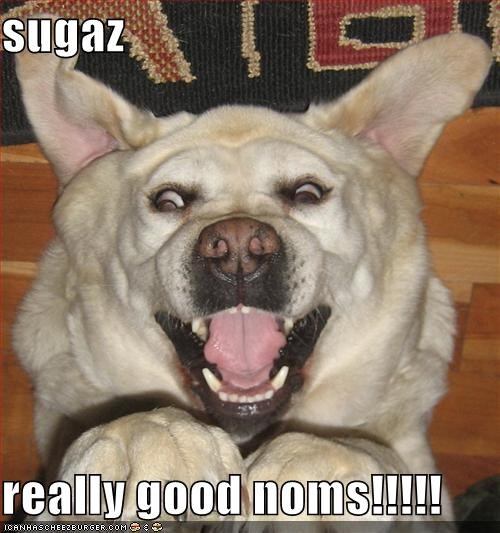 sugaz  really good noms!!!!!
