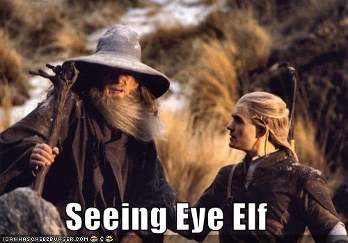 Seeing Eye Elf