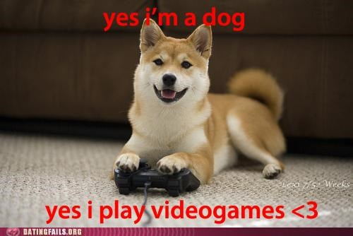 bestiality,dogs,video games,We Are Dating