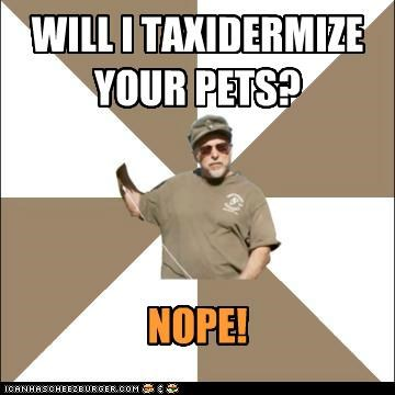 WILL I TAXIDERMIZE YOUR PETS?