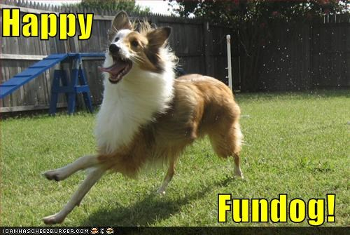 Happy  Fundog!