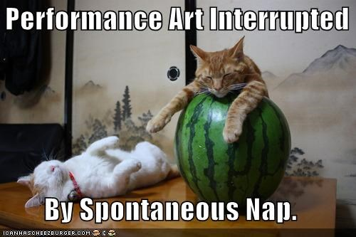 Performance Art Interrupted  By Spontaneous Nap.