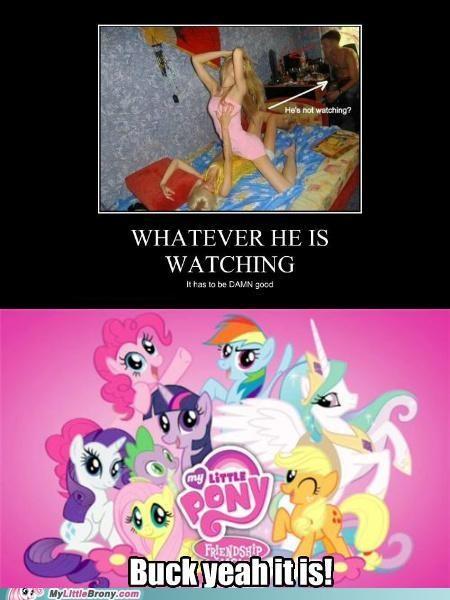 Disregard Females, Acquire Ponies
