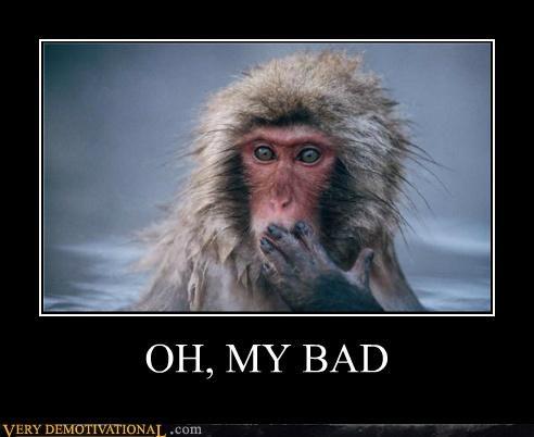 animals,hilarious,monkey,my bad