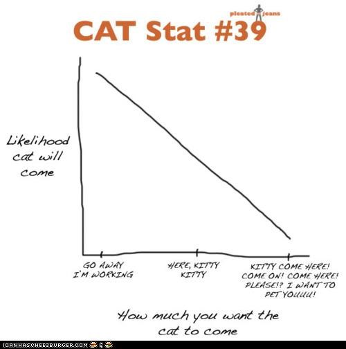 annoying,behavior,best of the week,charts,come here,graphs,here kitty,petting