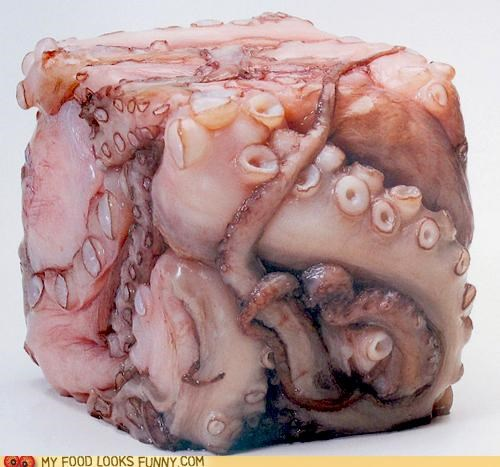 cube,funny food photos,octopus