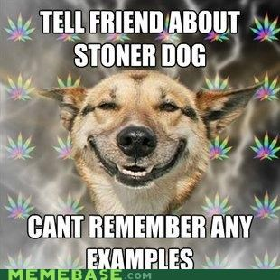Stoner Dog: The One with the, You Know