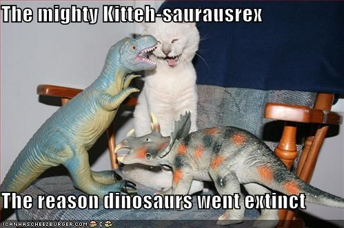 The mighty Kitteh-saurausrex  The reason dinosaurs went extinct