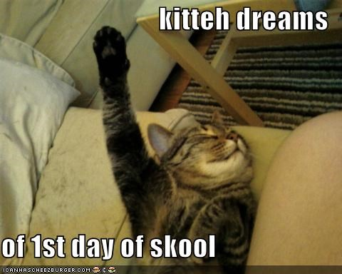 kitteh dreams  of 1st day of skool