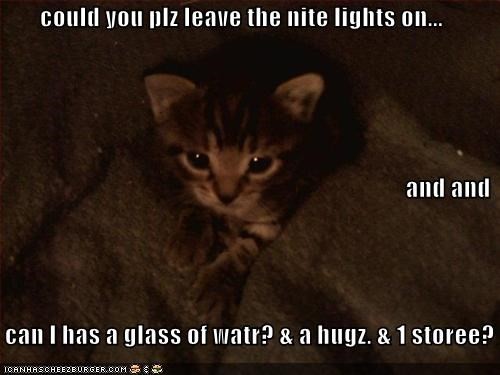 could you plz leave the nite lights on... and and     can I has a glass of watr? & a hugz. & 1 storee?