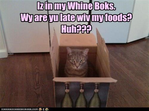 Iz in my Whine Boks.   Wy are yu late wiv my foods? Huh???