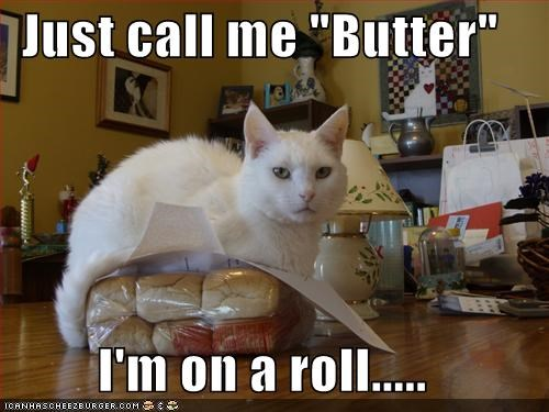 "Just call me ""Butter""  I'm on a roll....."