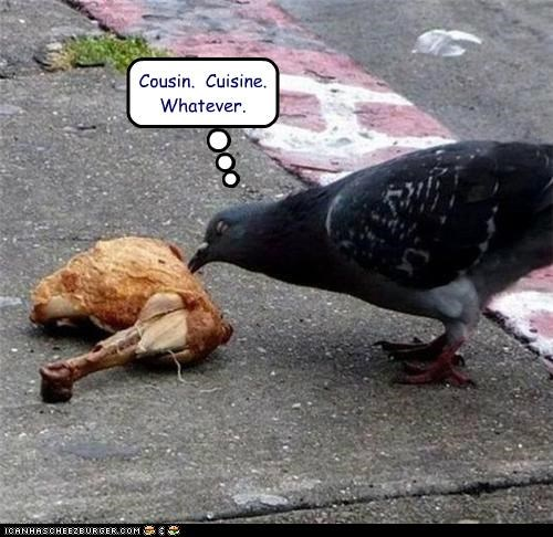 caption,captioned,chicken,Close Enough,cousin,cuisine,eating,no1curr,noms,pigeon,similar sounding,whatever