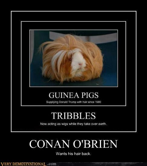 conan obrien,hair,hilarious,wtf