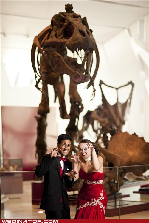 bride,dinosaurs,funny wedding photos,geek,groom