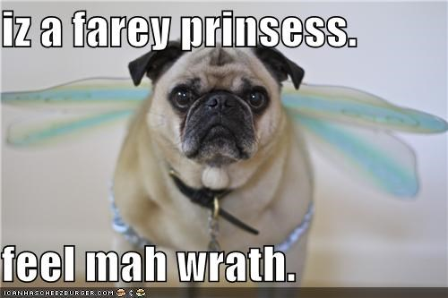 iz a farey prinsess.  feel mah wrath.