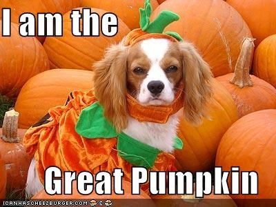 I am the  Great Pumpkin