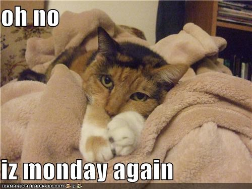 oh no  iz monday again