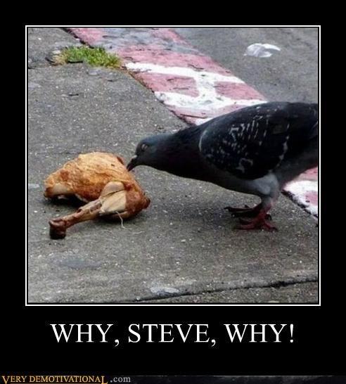 WHY, STEVE, WHY!